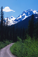 Road Toward Cerise Creek