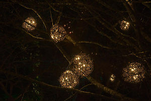 Basket Spheres Lit In Tree