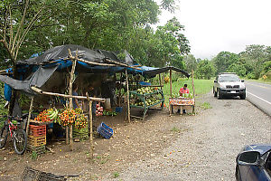 Road Side Fruit Stand
