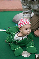 Nara Hiding On The Green