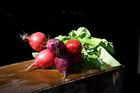Radishes On Wooden Box