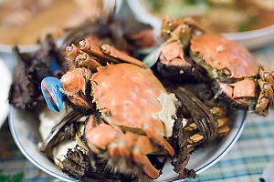 Hairy Crabs For Eating