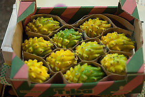 Box Of Yellow Dragon Fruit