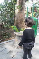 Claira Looking At Eclectus Parrot