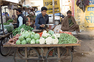 Mobile Vegetable Stand
