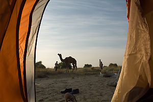 Tent In The Morning