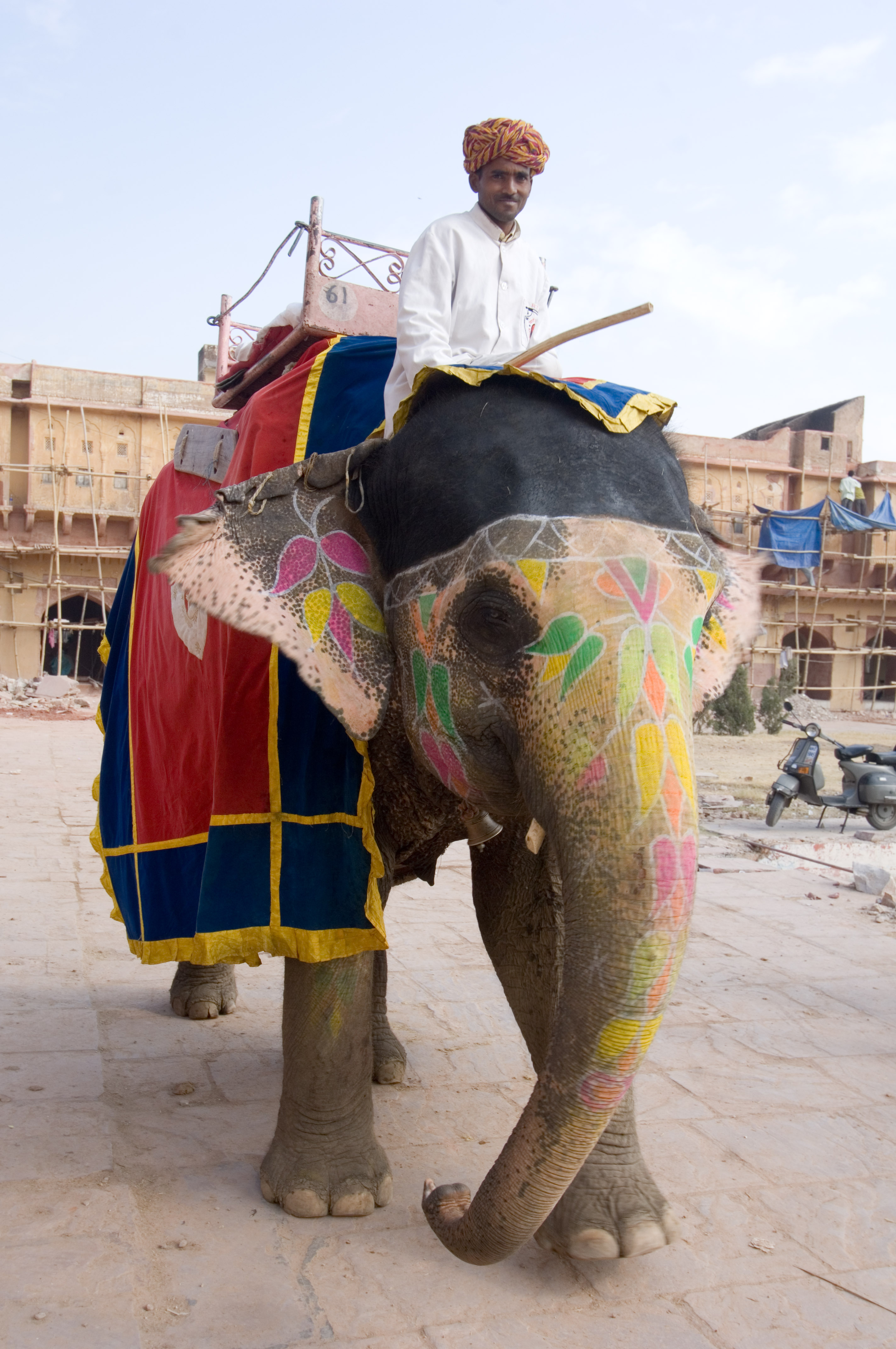 Riding Elephant In For...