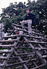Eric And Mark On Climbing Timbers