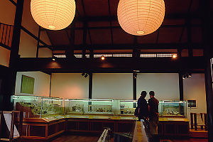 Eric And Gabi Looking At Museum Display