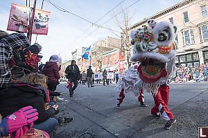 Chinese Dancing Lion At Parades Edge