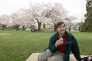 Mark Drinking Under Sakura