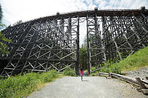 Nara Passed Under Kinsol Trestle