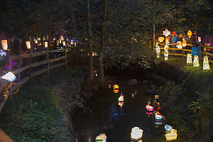 Boat Lanterns On Still Creek