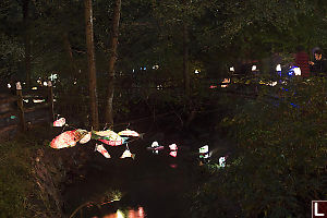 Salmon Lanterns Over Still Creek