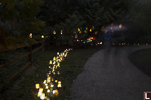 Stream Of Glass Lanterns