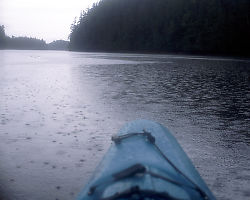Raining in Kayak