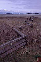 Fence at Rathtrevor