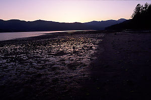 Mud Flats at Sunset