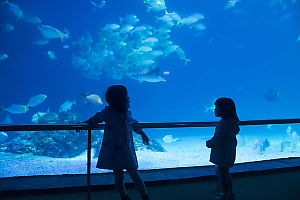 Kids With Rays Behind