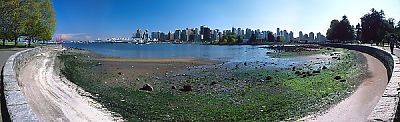 Downtown Vancouver From Stanley Park, in Spring