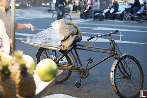 Ice Delivery Bike